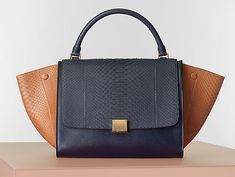 Celine Winter 2014 Handbags 28