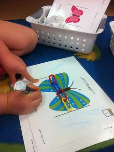 Butterflies and measurement
