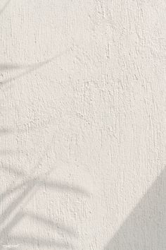 Textured Walls, Textured Background, Shadow Images, Cream Aesthetic, Watercolor Wallpaper, Concrete Wall, Motion Design, Ladies Boutique, Light And Shadow