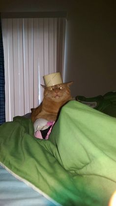 King Kitty demands sacrifice! http://ift.tt/2ftjJpq