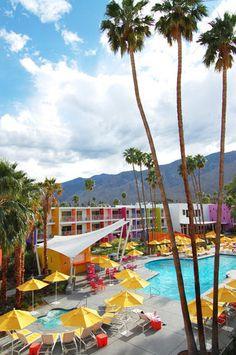 The Saguaro | Palm Springs