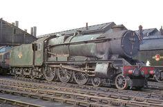 BR (GWR) County class No 1013 'County of Dorset'. Swindon shed. Diesel Locomotive, Steam Locomotive, Train Car, Train Tracks, Steam Railway, Abandoned Train, Bonde, Electric, British Rail