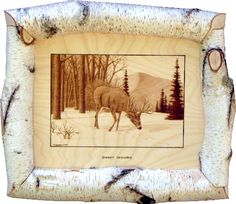 """Wildlife Woodburnings   The picture is burnt on birchplywood. Thepicture size is 15"""" wide x 10 ..."""