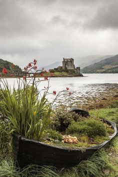 View of Eilean Donan castle near Dornie in the scottish high.- View of Eilean Donan castle near Dornie in the scottish highlands View of Eilean Donan castle near Dornie in the highlands - Landscape Photography, Nature Photography, Wedding Photography, Photography Jobs, Product Photography, Travel Photography, Places To Travel, Places To Visit, Travel Destinations