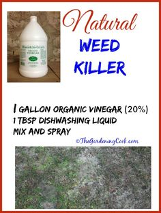 This Organic Vinegar Weed Killer is a perfect alternative to Roundup. It is cheaper, much more organic and easy to make with no added salt! Killing Weeds, Organic Vinegar, Weed Killer Homemade, Fertilizer For Plants, Weed Control, Natural Cleaners, How To Make Light, Lawn And Garden, Lawn Care