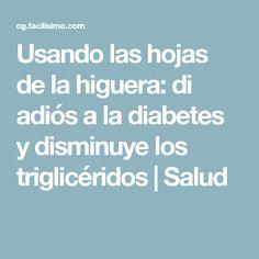 Usando las hojas de la higuera: di adiós a la diabetes y disminuye los triglicéridos   Salud