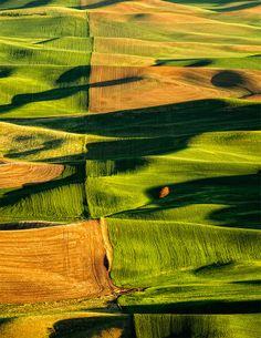 Heartland | Palouse Prairie | WA | Photo By Nader B.
