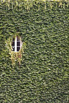 La finestra by alabauhaus, via Flickr
