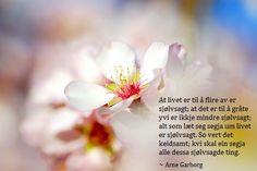 """""""At livet er til å flire av er sjølvsagt; at det er til å gråte yvi er ikkje mindre sjølvsagt; So vert det keidsamt; Spring Images, Spring Plants, Spring Blossom, Spring Fever, Hd Wallpaper, Wallpapers, Flower Power, Beautiful Flowers, Cool Photos"""