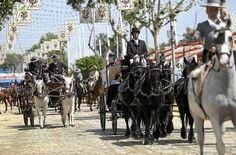 Feria de Sevilla. Spanish Feria. Un momento del paseo de caballos en la jornada del miércoles. #horses #caballos