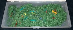 Insect Sensory Box - Use Easter grass and fill with bugs & other creepy crawlies