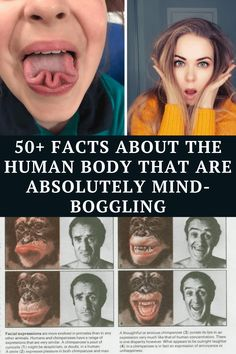 From being able to prevent cavities through kissing to human hair being virtually indestructible, read on to find out the weirdest facts about the human body. Witty Jokes, Dark Humor Jokes, Some Funny Jokes, Crazy Funny Memes, Really Funny Memes, Funny Facts, Haha Funny, Hilarious, Laughing Jokes