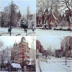 Wonderful images of the University of Leeds campus in the snow. All images taken by Amy Waterhouse.