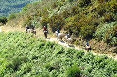"""Towards O Cebreiro. Photo of """"Al Paso"""" #Galicia"""