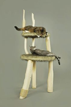 Catlounge cat chair tree