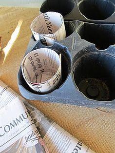 newspaper starter pots