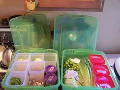 salad bar in fridge idea--I've always wondered why Tupperware or Rubbermaid or someone doesn't make a container for this.