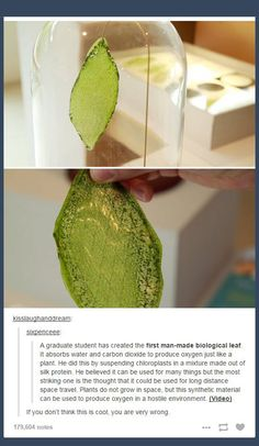 First Ever Man-Made Leaf