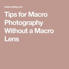 Tips for Macro Photography Without a Macro Lens