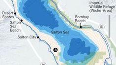 Drought, drawdowns and death of the Salton Sea Salton Sea, Water Resources, Wildlife, Death, California