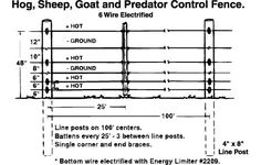 Electric Fence Design Elec fence heights how many wire strands do i need on the farm hog sheep goat and predator electric fencing for protection to livestock workwithnaturefo
