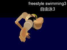 Freestyle/Front Crawl