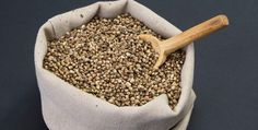Hemp seed recipes are everywhere — from major news outlets to your local supermarket circular. Here's a roundup of some recent hemp seed recipes.