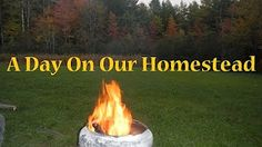 Maine.Homestead.Project - YouTube