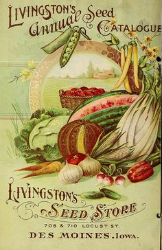 Back cover of 1899 seed catalogue ~ fruit and vegetables. Vintage Labels, Vintage Cards, Vintage Postcards, Vintage Ephemera, Vintage Diy, Images Vintage, Vintage Pictures, Impression Etiquette, Seed Art