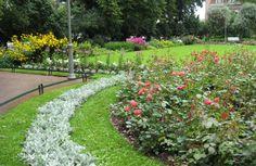 Eiran puiston näyttävin elementti on kaksi suurta perennaistutusta [Kikka Niittynen]