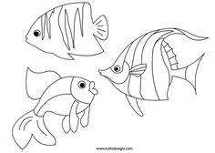 Pesci da stampare e colorare - TuttoDisegni.com