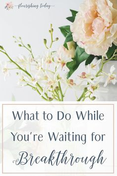Are there places in your life that seem dead or forgotten? How do you hang on while your waiting for God to move? Here are a few things to do while your waiting for breakthrough. #breakthrough #godstiming