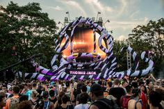 Electric Zoo 2015 Courtesy Of