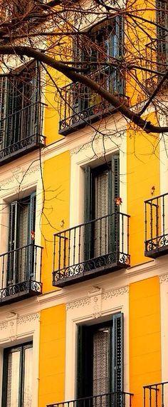 Windows & Terrace doors