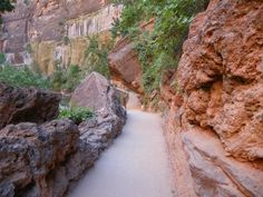 Even though the trail is incredibly easy, it's still very much a Utah trail.
