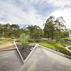 Great to see #Plantbank and the Lichen Garden on #ABCGardeningaustralia the other week. @gardeningaustralia @costasworld #royalbotanicgardens #abcgardening