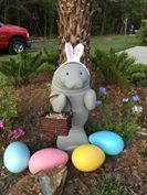 Happy Easter from Save the Manatee Club! It's an Easter-bunny-manatee! (Photo submitted to us by Julie S.) (:3)
