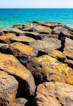 Elwood Beach – 6 beaches in Melbourne, Australia for your list Melbourne Beach, Melbourne Australia, Australia Travel, Melbourne Tourism, Western Australia, Sunshine Coast, Tasmania, Oh The Places You'll Go, Europe