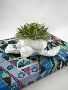 Bright White Sea Turtle Planter  Modern Art by CoastalMoss on Etsy, $35.00