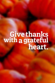 Thanksgiving Inspirational Quotes Unique 21 Inspirational Thanksgiving Quotes  Thanksgiving Quotes .
