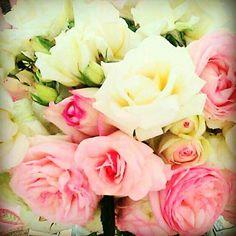 Pink & white roses.