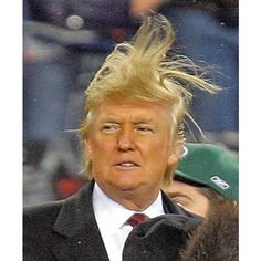 Donald Trump has bad hair. ❤ liked on Polyvore featuring accessories and hair accessories