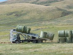 Haying. Old Farm Equipment, Shake It Off, Farming, Acre, Ranch, Trucks, Activities, Guest Ranch, Truck