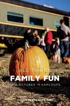 Put on your best costume and pick the perfect pumpkin for a fa-boo-lous October. Discover all the family friendly activities in Kamloops this October from pumpkin patches, heritage tours, corn mazes, and more. Pumpkin Patches, Corn Maze, Halloween Season, Cool Costumes, Family Activities, Friends Family, October, Tours, Fun
