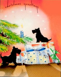 Scotties on guard duty at Christmas.