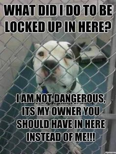If you have to lock them up all day you don't have time for them. you should spend a day in a cage. Live with that!