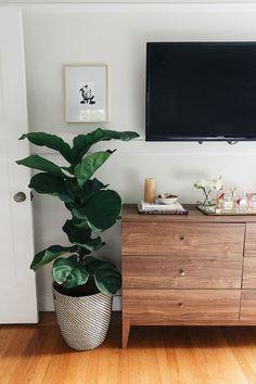 Simple And Effective Interior Home Design Solutions Retro Home Decor, Diy Home Decor, Home Decor With Plants, Plant Decor, Decor Crafts, Home Bedroom, Bedroom Decor, Bedroom Furniture, Bedrooms