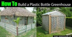Building A GreenHouse From Plastic Bottles