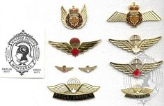 Canadian Force Wings
