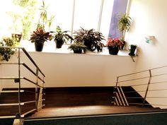 L'escalier de l'accueil.